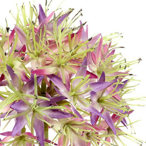 Allium violet clair L. 76 cm