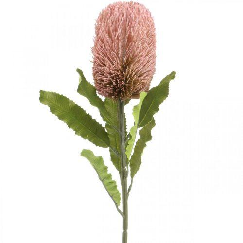 Fleur artificielle Banksia rose décoration automne fleurs commémoratives 64cm