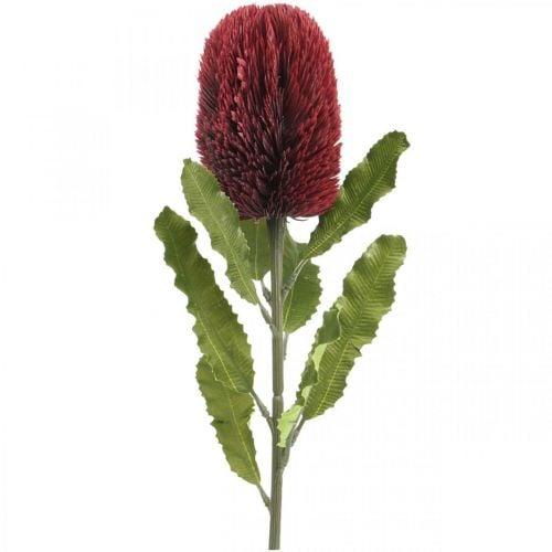 Fleur Artificielle Banksia Rouge Bordeaux Artificielle Exotiques 64cm