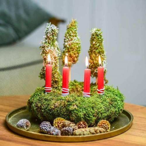 Bougies d'arbre rouge 20 pcs