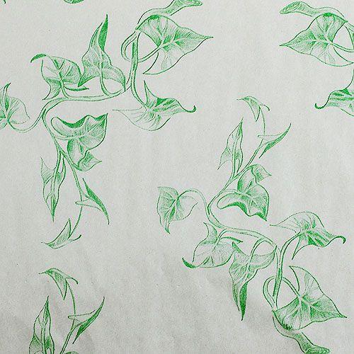 Papier de soie 50 cm lierre 6 kg