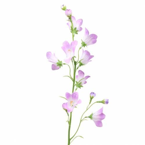 Campanule artificielle Bellflower Purple 66cm