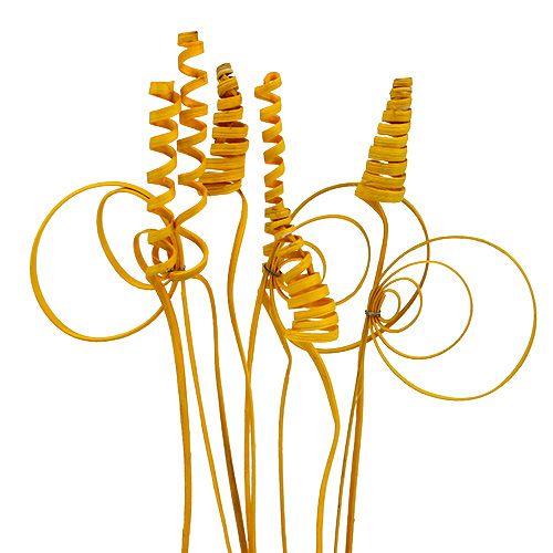 Assortiment de mini tiges Cane Coil jaune doré 75 p.