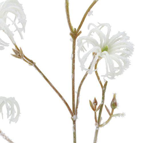 Branche de clématite blanche floquée 62cm 3pcs