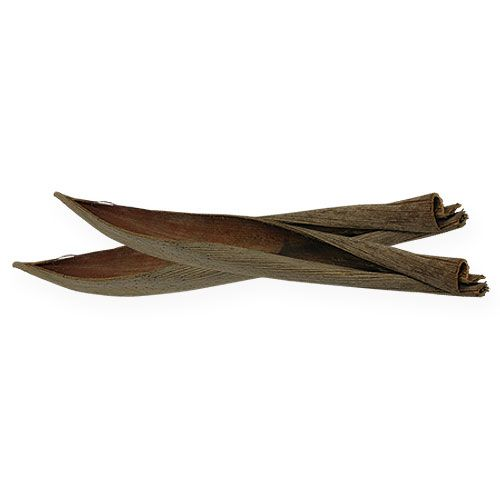 Bols en noix de coco naturel 60cm 5pcs