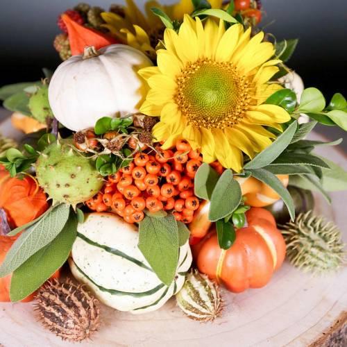 Mélange de citrouille de décoration d'automne 12pcs