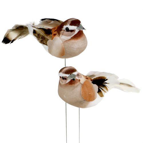 Oiseau décoratif à piquer brun 10 cm 12 p. - boutique en ligne d on