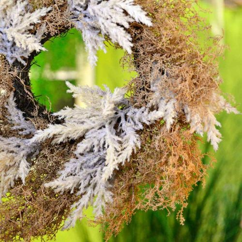 Couronne décorative herbe de pampa crème artificielle, couronne de porte marron Ø60cm