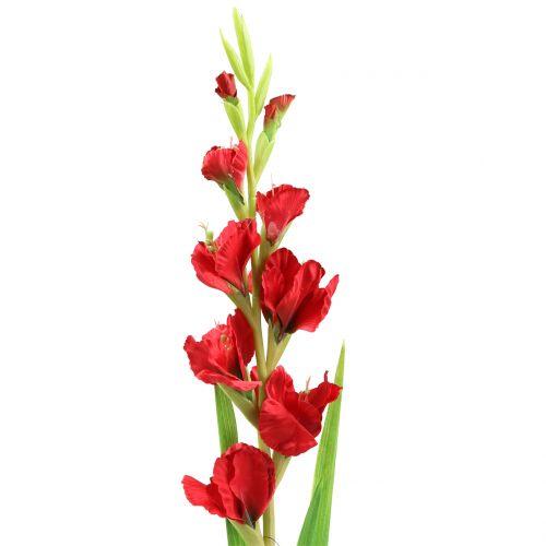 Glaïeul rouge 93 cm