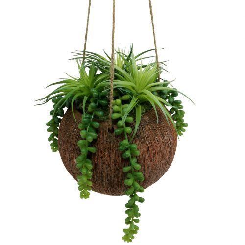 Succulentes artificielles en pot à suspendre L60cm Ø16cm