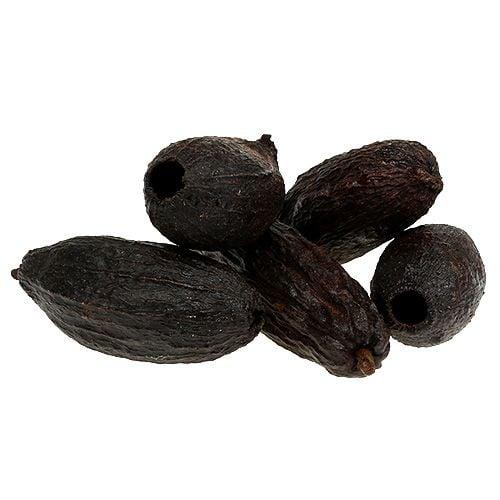 Fruit de cacaoyer 10-18 cm 15 p.