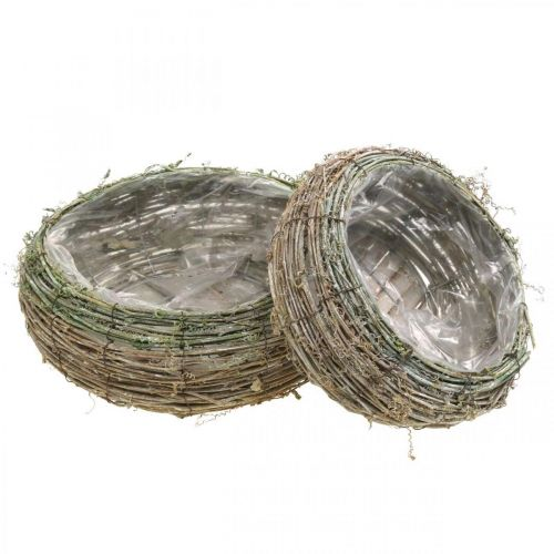 Panier à plantes rond vigne bicolore, bois Ø18/25cm, lot de 2