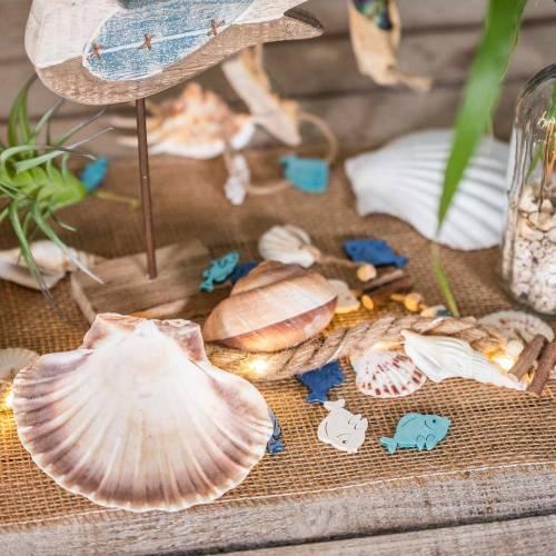 Coquille décoration pétoncles polis 12-13cm 4pcs