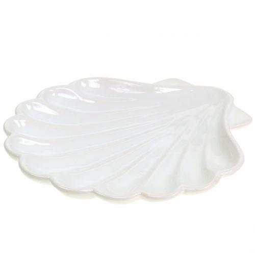 Coquille Décorative Blanc 15cm x 16cm 3pcs
