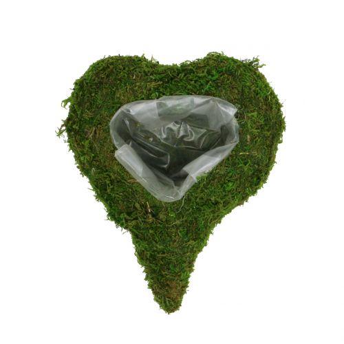Cœur à garnir en mousse végétale 23 x 19 cm