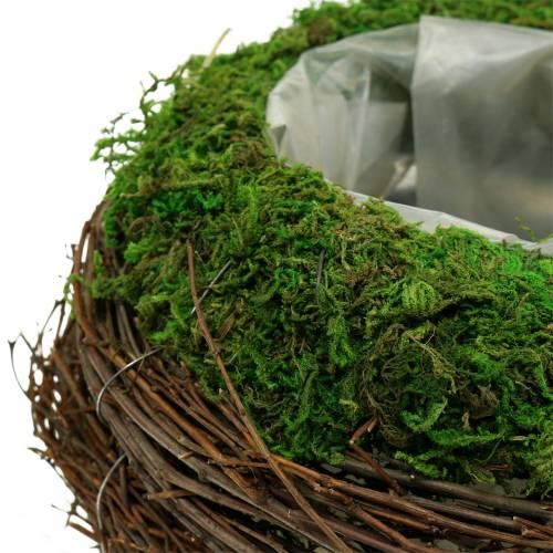 Jardinière en rotin, mousse Ø19cm H13cm