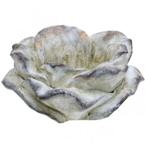 Rose béton, décoration jardin, rosier végétal, fleurs funéraires gris, abricot, violet Ø12cm L26.5cm H11cm