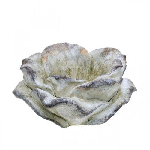 Fleur de rose à planter, fleurs funéraires, pierre rose, décoration béton gris, abricot, violet Ø11cm L22cm H9cm