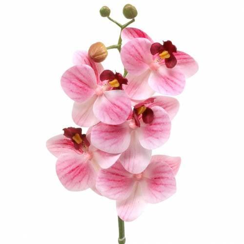 Branche d'orchidée artificielle Phaelaenopsis rose H49cm