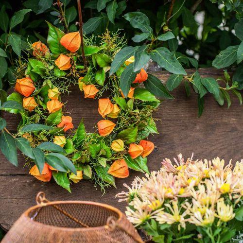 Physalis couronne artificielle orange, vert Ø28cm décoration automne