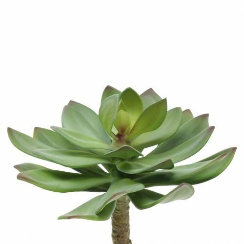 Succulente artificielle verte 27cm