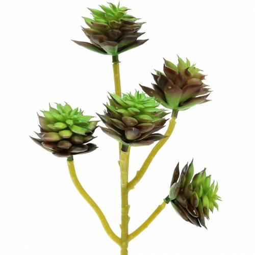 Cueillette Succulente Vert / Marron 35.5cm