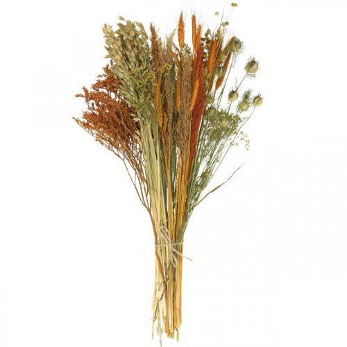 Set DIY fleurs séchées pour faire sécher le bouquet orange 60cm