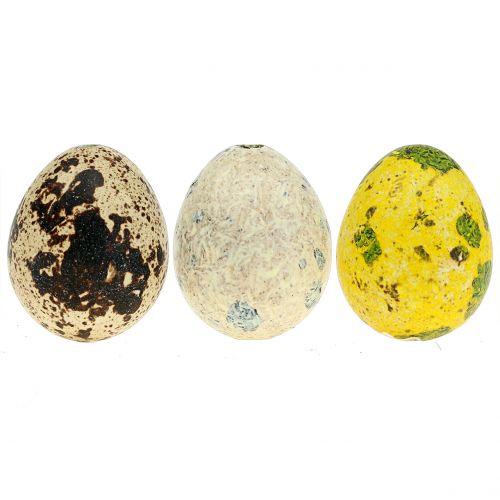 Œufs de caille assortiment jaune, naturel 3 cm 72 p.