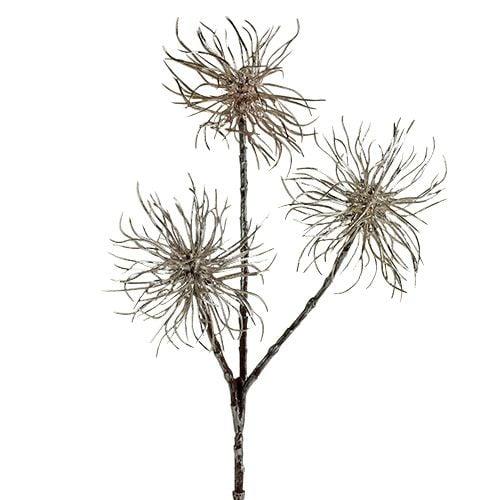 Branche d'hamamélis champagne 45cm 3pcs