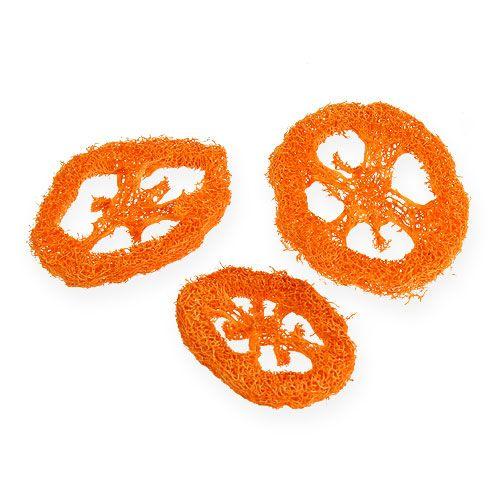 Tranches de luffa orange 25 p.