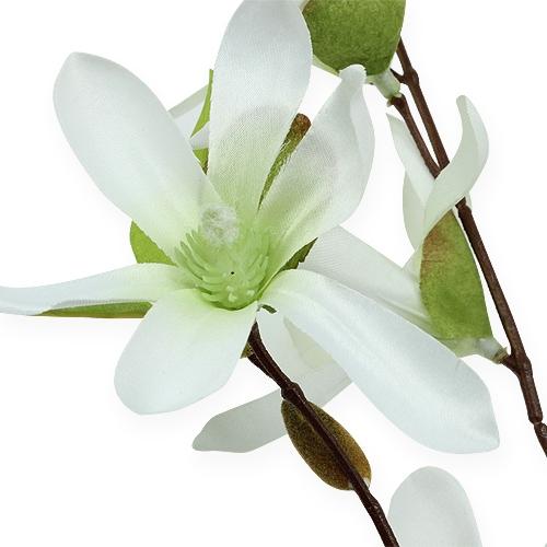 Branche de magnolia vert clair 90 cm
