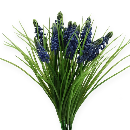 Jacinthes de raisin 28cm - 30cm bleu 15pcs
