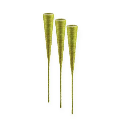 Vase pointu en sisal vet clair Ø 3,5 cm L. 40 cm 5 p.