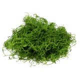 Mousse espagnole vert printanier 250 g