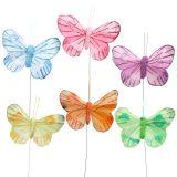 Papillon de plume sur fil de fer 6 cm 12 p.