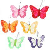 Papillons en plumes sur clip, couleurs assorties 7 cm 12 p.