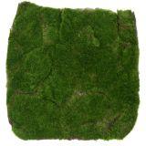 Tapis de mousse vert 35 x 35 cm