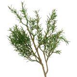 Branche de romarin 36 cm 3 p.